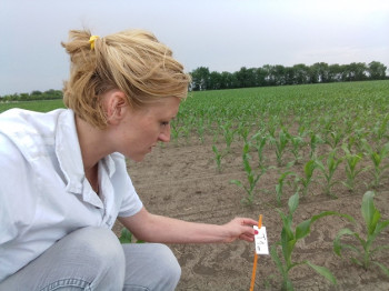 field trials Serbia